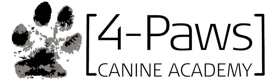 4-paws canine academy acrodogics