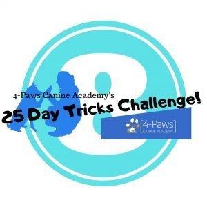 8th day of dog tricks challenge