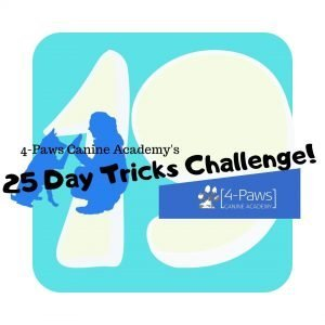 19th day of dog tricks challenge
