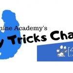 25 Day Online Dog Trick Challenge