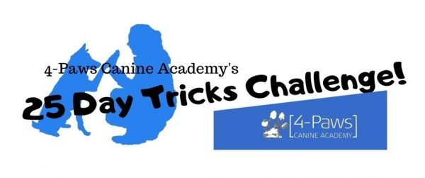 25 day online dog trick training course