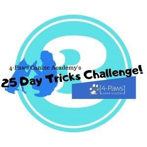 third dog tricks challenge