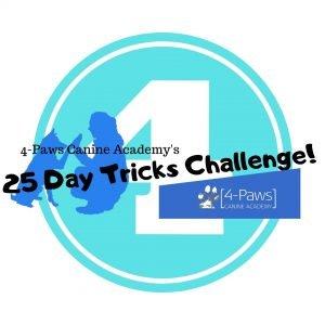 fourth dog tricks challenge